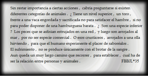 Sufrimiento animal #FBBJL