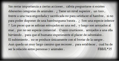 Sufrimiento animal #FBBJL